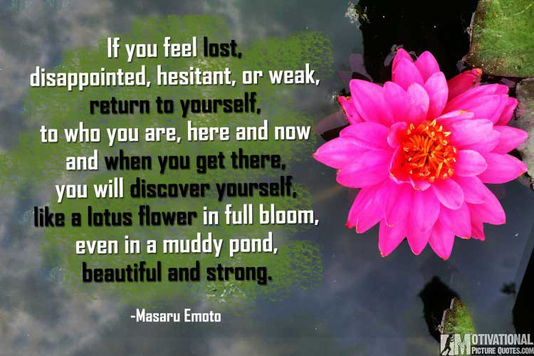 short quotes being strong by Masaru Emoto