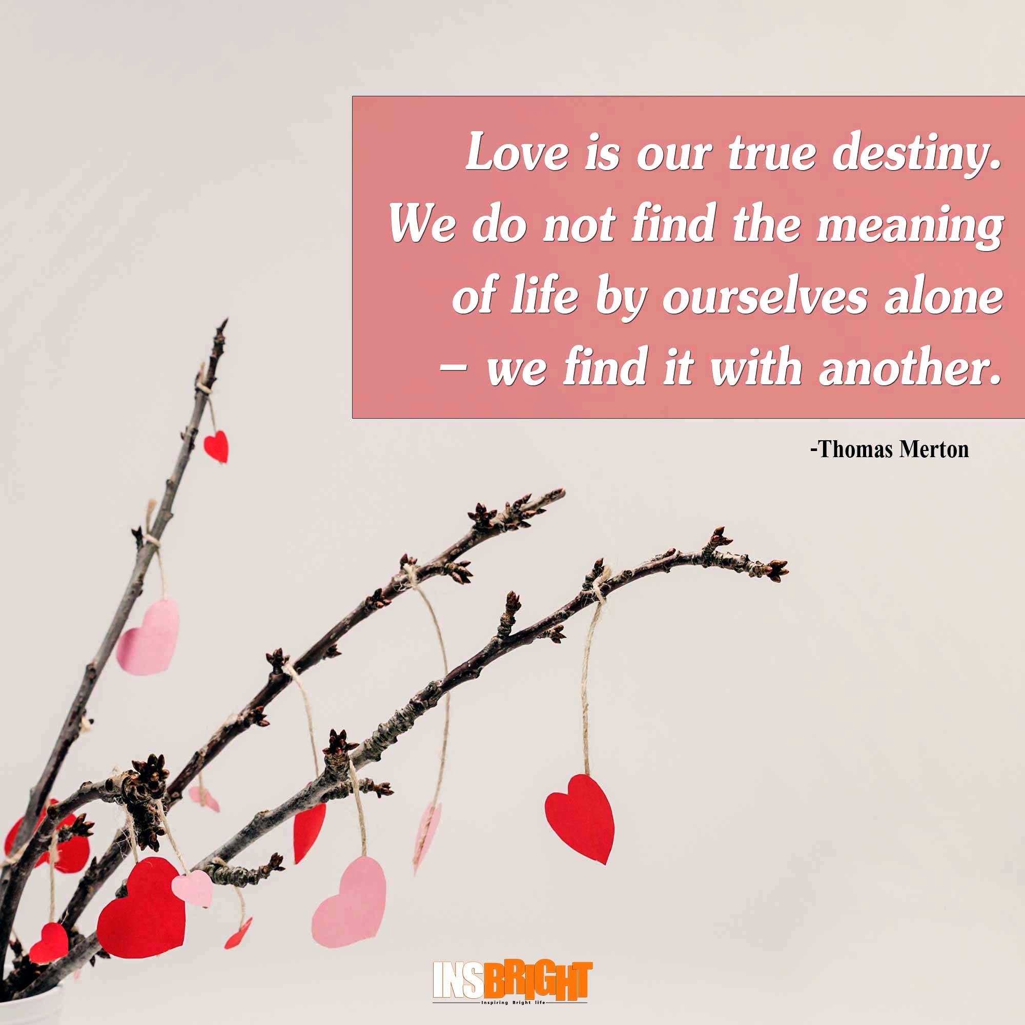 Valentine day quotes for friends quotes of the day for Sweet valentine day quotes for her