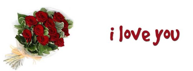 12 red roses meaning in valentines day