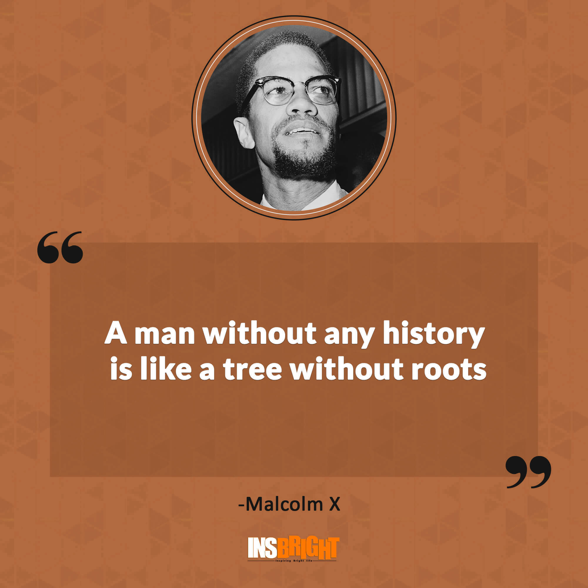 5+ Famous Malcolm X Quotes With Images  Short Malcolm X Greatest