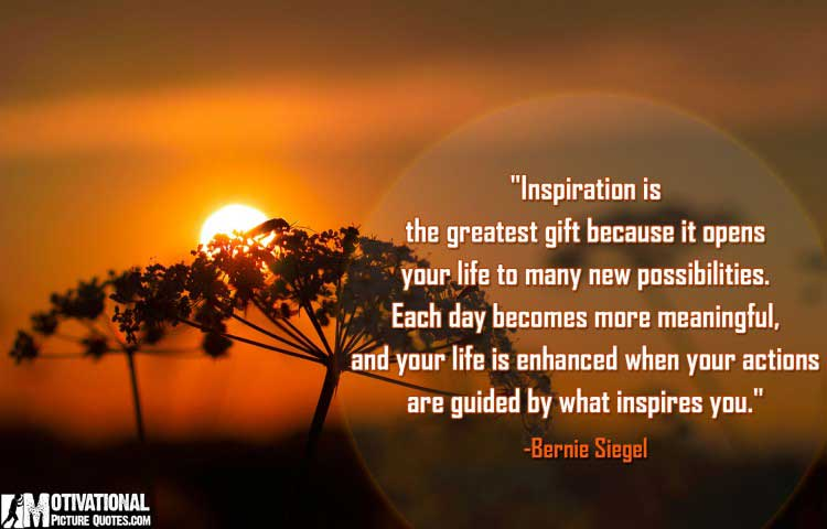 Bernie Siegel Inspirational Quotes With Pictures